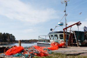 Bakgrund - Rönnskär Kristihimmelshelg 2016 - 16-05-08-IMG_9571